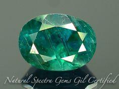 GiL Certified 1.10 ct Grandidierite Extreamly Rare Gemstone Madagascar PR.2