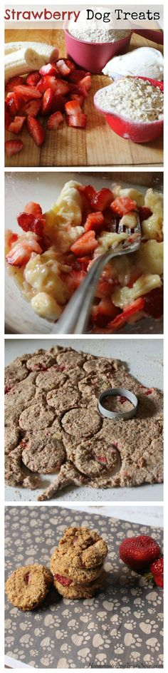Don't these Strawberry Dog Treats look delicious? Most dogs have a sweet tooth just like people, haven't you ever caught Fido trying to snatch a cookie? There are ways to indulge their canine cravings without the dangers of chocolate or processed sugar overload. Fresh fruit offers a natural sweetness to these dog treats, along with …