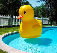 The giant rubber ducky is an inflatable toy that you can use in the pool, out on the lake, or in the bathtub, that is assuming you bathtub is around the size of an Olympic swimming pool. Measuring a m...