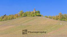 Wanderung im Heilbronner Land durch die Weinberge zum Heuchelberg