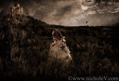 Nichole Van Photography