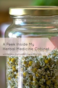 Living Naturally: A Peek Inside My Herbal Medicine Cabinet || Vintage Kids | Modern World | See more about medicine cabinets, vintage kids and herbal medicine.