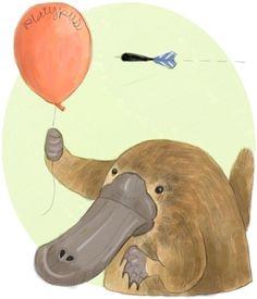 platypus drawings