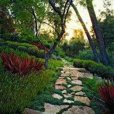 A winding path in the evening - love hit of red