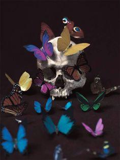 The Contemporary Vanitas, by Mario Monforte
