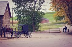 Amish Country - I love taking a trip up to PA and seeing all the farmer's and family's hard at work! :) The Amish have such beautiful quilting too! <3