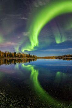 Nature's Art Photo by Manish Mamtani -- National Geographic Your Shot