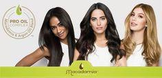 Macadamia Oil, Dry Hair, Hairstyle