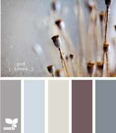 I love this color scheme. I think I could find a color to use in every room and hallway in our house!