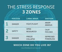 Limbic System, Signs Of Stress, Mental Conditions, Emotional Regulation, Train Your Brain, Brain Waves, Brain Training, Anger Management
