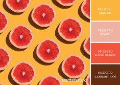 101 Color Combinations to Inspire Your Next Design – Citrus Color Palette Blue Color Schemes, Colour Pallette, Color Combos, Orange Palette, Couleur Hexadecimal, Color Meanings, Design Seeds, Blood Orange, Orange Tea