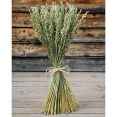 @curiouscountry posted to Instagram: Spring and summer bouquets are made even more spectacular with some Avena stems.  Or use a freestanding bunch of these green oats as a decor statement on their own.  You'll love what they add to your home or event decor.  Shop our full catalog by clicking the link in our bio.   #homedecor #decoration #livingroominspiration #livingroominso #diyhomedecor #decorating #decorideas #homestyle #decoratemyspace #naturaldecor #avena #oats #driedflowers #driedplants #d