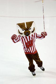Wisconsin Badgers Mascot   Bucky Badger on Ice « UW-Madison Photo Library