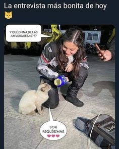 """Gatos Cool en Instagram: """"Entrevistas que valen la pena de televisa. . . . . . #memesdegatoscool #gatoscool😸 #gatos_cool #entrevistas #entrevista #noticias…"""""""