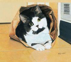 Brown Bagging It.  Lyn Estall