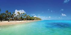 Barcelo Bavaro Beach (Adults Only) - Dominican Republic - Punta Cana | Cheap Caribbean | 4 Nights with Air from $939 – All-Inclusive