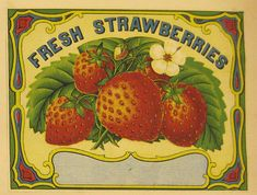 Big Business: H. W. Dubois & Co. an AAS Online Exhibition