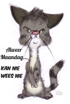 by ShoJoJim on DeviantArt . by ShoJoJim. Character Design Cartoon, Cat Character, Comic Manga, Photo Chat, Cartoon Sketches, Cute Animal Drawings, Here Kitty Kitty, Cat Drawing, Whimsical Art