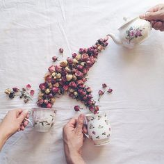 In her enchanting Floral Tea Story series, Russian artist and tea lover Marina Malinovaya arranges flowers and leaves in a whimsical way. Using only plants, a tea set, and a tabletop, she cleverly creates the illusion of cups overflowing with flora.