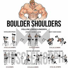These 8 exercises should be your to gym workout and on every exercise plan, heaps of equipment necessary Shoulder Day Workout, Boulder Shoulder Workout, Shoulder Workouts For Men, Gym Workouts For Men, Gym Tips, Weight Training Workouts, Chest Workouts, Gym Training, Gym Workout Chart