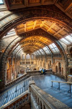 Want to learn how this photo was created? View this HDR Photo Before and After.  Or go directly to My HDR Tutorial  For HDR tips, tutorials, and to view HDR Photography before and afters, visit: www.blamethemonkey.com  ---  A tasty treat  Here is yet another shot from inside London's Natural History Museum or as I like to call it, The HDR Playground.  Seriously, I'm like a fat kid in a candy store here, eyes bulging, palms sweaty, begging for just one more fix; just one more piece of sweet…