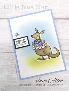 Star Cards, Animal Cards, Catalogue, Little Star, Baby Cards, Homemade Cards, Stampin Up Cards, I Card, Cardmaking