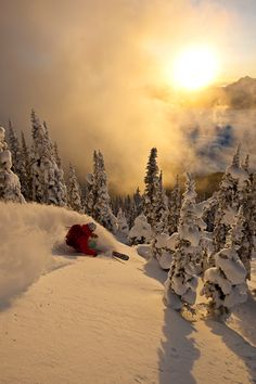 Atmospheric bliss! #backcountrypowder #offpistepowder #offpisteskiing #backcountryskiing
