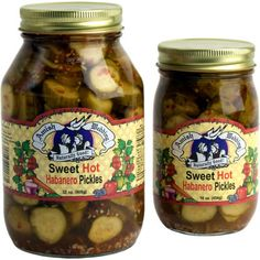 Sweet Hot Habanero Pickles (Amish Wedding Foods) So addicted to these! Amish Recipes, Dutch Recipes, Gourmet Recipes, Wedding Sweets, Wedding Foods, Garlic Dill Pickles, Cucumber, Frozen, Treats