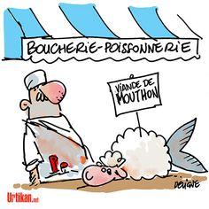 Un mouton OGM a fini dans une assiette - Dessin du jour - Urtikan.net