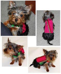 DIY Adorable Dog Jacket