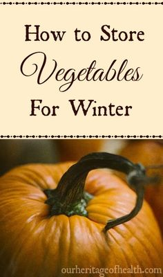 How to store vegetables from your garden or from a farm stand so they'll keep…