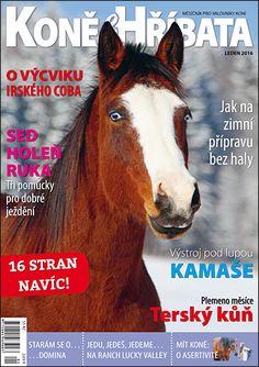 Leden 2016 Equestrian, Magazines, Horses, Animals, Dominatrix, Journals, Animales, Animaux, Horseback Riding