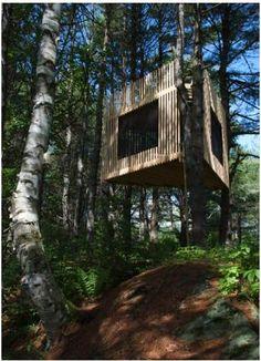 Nice Tree House  #Treehouse Pinned by www.modlar.com