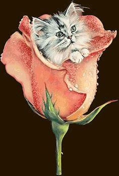 Glitter Graphics: the community for graphics enthusiasts! I Love Cats, Cool Cats, Animals And Pets, Cute Animals, Good Morning Animation, Image Chat, Beautiful Gif, Glitter Graphics, Gif Animé