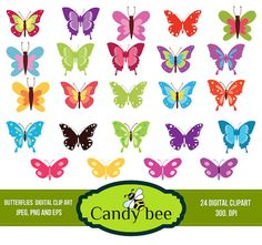 Butterfly clipart, Butterflies clip art Instant digital download - Commerical and Personal Use