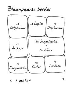 Borders-blauwpaars_420