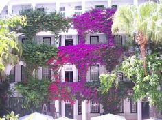 Winchester Mansions – Cape Town Central, Cape Town