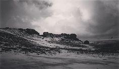 #cowandcalf #ilkleymoor  #snow #yorkshire #blackandwhite #blackandwhitephotography #instablackandwhite