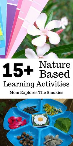 Over 15 Nature Based Learning Activities, Mom Explores The Smokies