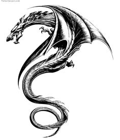 Tattoos Design Tribal Dragon picture 11558