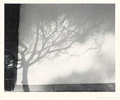 Invented Landscape, Manuel Alvarez Bravo, negative 1972, print 1974. © Asociación Manuel Álvarez Bravo AC