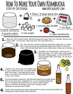 How to make your own Kombucha