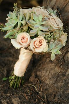 love the coral ish color with succulents... maybe grey succulents in my bouquet?