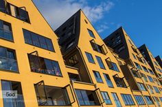 Modern yellow houses Yellow houses in the Rheinauhafen Cologne Germany