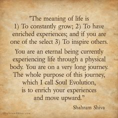 Shahram Shiva Quotes.