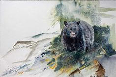 Vorbereitung für unsere Ausstellung im Rostocker Zoo | Grüße aus Kanada (c) ein Schwarzbär in einem Aquarell von Hanka Koebsch