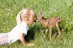 A little girl kissing a fawn. Omg I can't handle the cuteness!