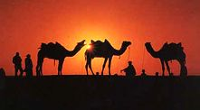 Holiday destinations India | Holiday tour packages in India