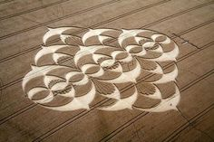 Google Image Result for http://www.bookingadvisor.com/blog/wp-content/uploads/2010/12/Crop-Circle-at-South-Field.jpg