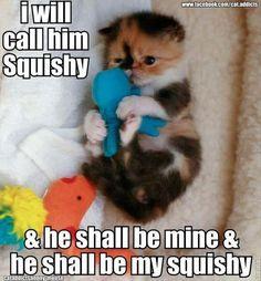 Cute Persian Kitten Cuddling Toy